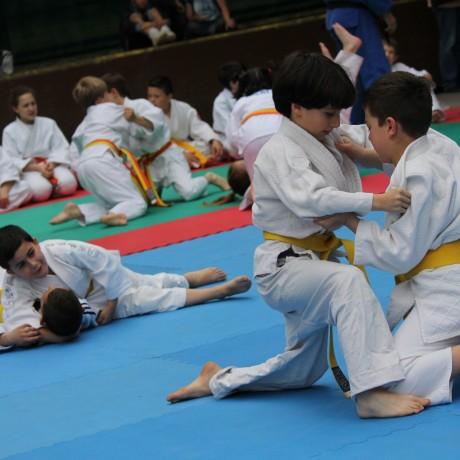 Judo (Judo Club Budokwai)